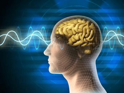 بیولوژی مغز نوجوانان